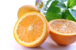Citrus fruits with herbs Stock Photography