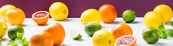 Citrus fruits - horizontal image Royalty Free Stock Photos