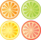 Citrus fruits icon set Stock Photos