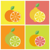 Citrus fruits icons Stock Photography