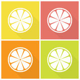 Citrus fruits icons Stock Image