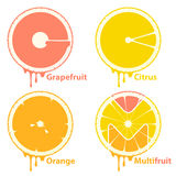 Citrus fruits icons / design elements Stock Image
