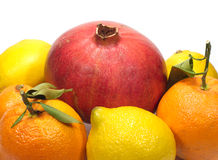 Citrus fruits isolated Royalty Free Stock Image