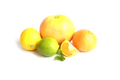Citrus fruits isolated on white. Background Royalty Free Stock Photography