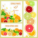 Citrus fruits. Labels set. Bergamot, lemon, grapefruit, lime, mandarin, pomelo, orange, blood orange with splashes Stock Photography