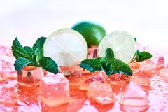Citrus fruits: lime with mint and ice cubes on a coral background. Fresh summer fruits stock photo