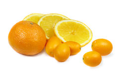 Citrus fruits - mandarine, orange and kumquat Stock Images