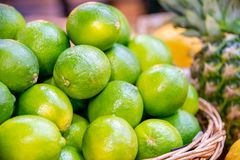 The citrus fruits at the market display stall. Citrus fruits at the market display stall royalty free stock image