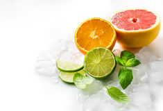 Citrus fruits with mint and cubes of ice on white copy space bac Stock Photography