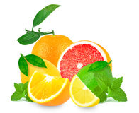 Citrus fruits and mint Royalty Free Stock Photography