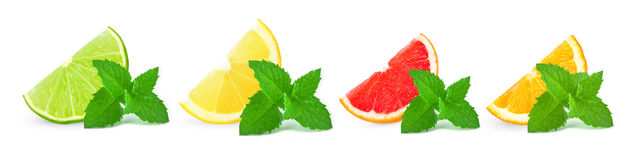 Citrus fruits with mint Royalty Free Stock Photo