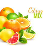 Citrus Fruits Mix Realistic Background Poster stock illustration