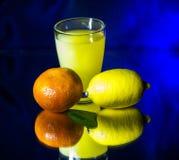 Citrus fruits and orange juice. Still life with citrus fruits and a glass of orange juice Royalty Free Stock Photo