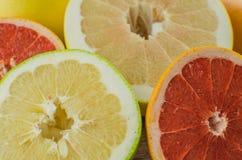 Citrus fruits orange, lemon, grapefruit, mandarin, lime stock photography