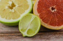 Citrus fruits orange, lemon, grapefruit, mandarin, lime royalty free stock photo