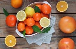 Citrus fruits - orange, lemon, grapefruit, tangerine Stock Images