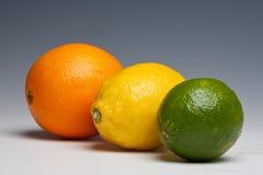 Citrus fruits orange lemon lime. On a plain background Royalty Free Stock Image