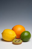 Citrus fruits orange lemon lime Royalty Free Stock Image