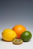 Citrus fruits orange lemon lime. And kiwi fruit on a plain background Royalty Free Stock Image