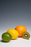Citrus fruits orange lemon lime. And kiwi fruit on a plain background Royalty Free Stock Photo