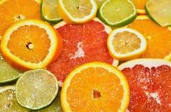 Citrus fruits orange, lemon, limet, grapefruit . Citrus fruit is the source of vitamins for our health Royalty Free Stock Photo