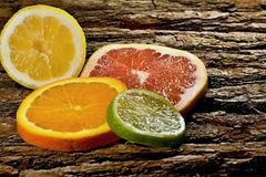 Citrus fruits orange, lemon, limet, grapefruit . Citrus fruit is the source of vitamins for our health Stock Photography