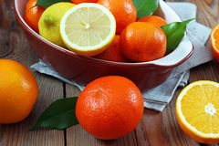 Citrus fruits - orange, lemon, tangerine Royalty Free Stock Image