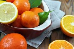 Citrus fruits - orange, lemon, tangerine Stock Image