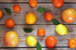 Citrus fruits - orange, lemon, tangerine, grapefruit Stock Photos