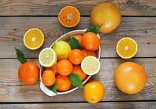 Citrus fruits - orange, lemon, tangerine, grapefruit Royalty Free Stock Photo