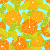 Citrus fruits pattern. Seamless background. Vector illustration Royalty Free Stock Photo