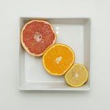 Citrus fruits. On plates Stock Images