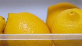 Citrus fruits in refrigerator. Fresh yellow lemons in icebox. Vitamin C. Copy space. Lemons keep freshness in the fridge