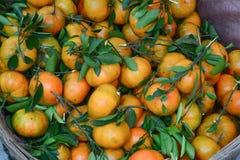Citrus fruits for sale Stock Images