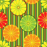 Citrus fruits seamless pattern Royalty Free Stock Images