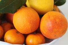 Citrus fruits of Sicily - Italy Royalty Free Stock Photos