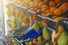 Citrus fruits of sicily Royalty Free Stock Images