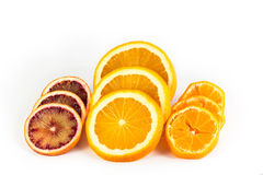 Citrus fruits slices Stock Images