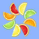 Citrus fruits slices on blue. Stock Photo