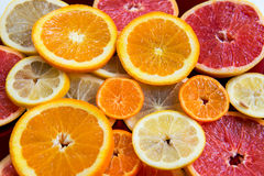 Citrus fruits slices Royalty Free Stock Images