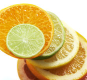Citrus fruits slices stacked together Royalty Free Stock Photography