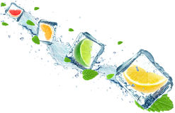 Citrus fruits splash Royalty Free Stock Photo