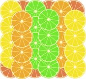 Citrus fruits vector pattern background Royalty Free Stock Photography