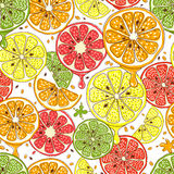 Citrus fruits vector seamless background. Food lemon and mandarin, grapefruit and orange, fresh design illustration Stock Photos