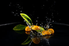 Citrus fruits in water Royalty Free Stock Images