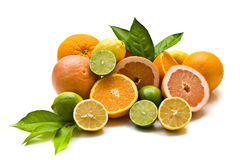 Citrus fruits on white background. Miscellaneous citrus fruits on white background Stock Photography
