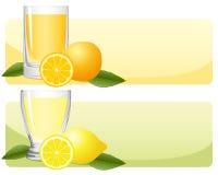citrus fruktsaftset vektor illustrationer