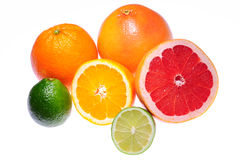 Citrus fruts. Citrus fruits isolated on white background royalty free stock photos
