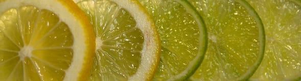 Citrus gradient Stock Photo