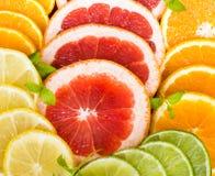 Citrus. Grapefruit Orange Lime Lemon Colour Royalty Free Stock Photography